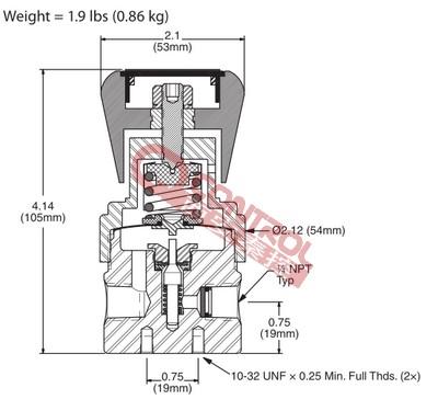 PR1-1F11A3C111 GO氢气减压器
